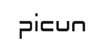 Picun